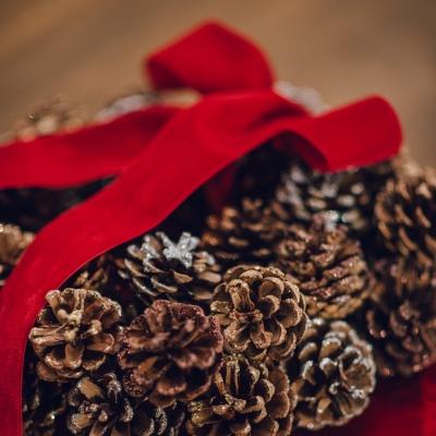 <p>Pine cone garland with velvet bow<br>D=40 cm</p> - Floralia
